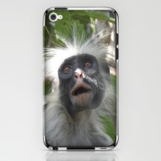 Red Colobus Monkey iPhone & iPod Skin