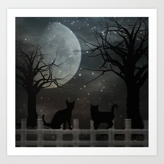 Fence Sitting Art Print