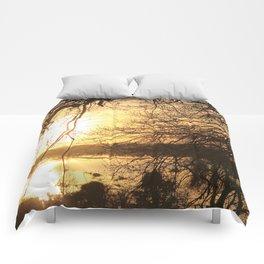 Golden Sunset Comforters