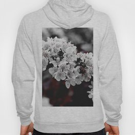 FLOWERS - BLOOM - NATURE - PHOTOGRAPHY Hoody