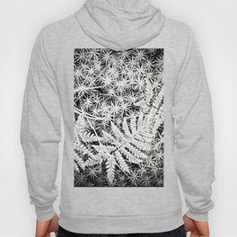 Moss and Ferns Hoody