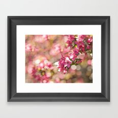 spring blossoms Framed Art Print
