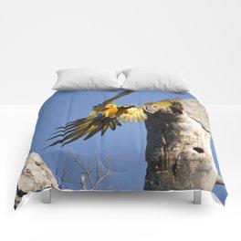 Birds from Pantanal Arara Canindé Comforters