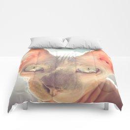 Floyd The Cat Comforters