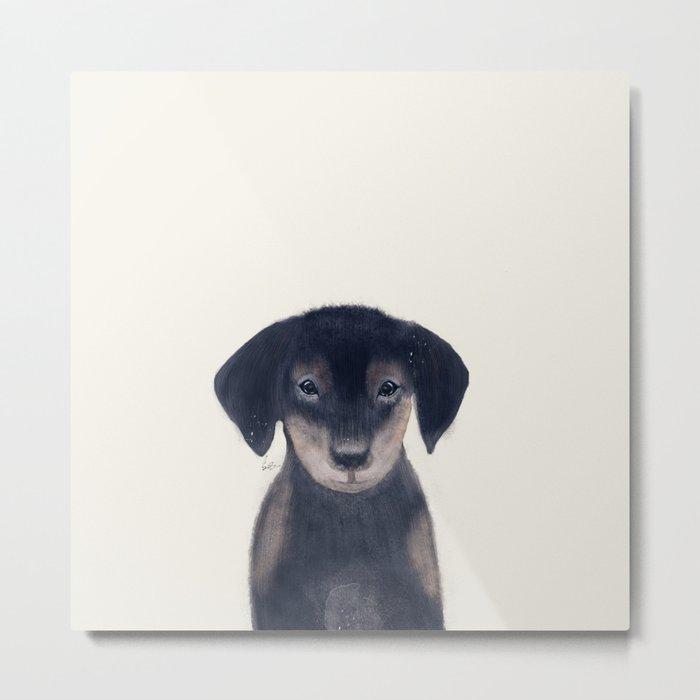 little dachshund Metal Print