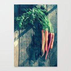 Carrot Bunch Canvas Print