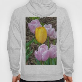 Pink Tulips, Yellow Tulip Hoody