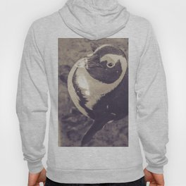 Adorable African Penguin Series 3 of 4 Hoody