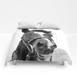Horse Photo   Black and White Comforters