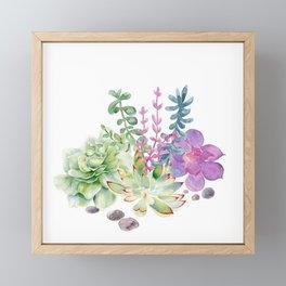 Succulents Framed Mini Art Print