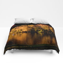 Reflections of the Fall Comforters