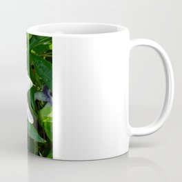 Beautiful Passion Flower With Garden Background  Coffee Mug