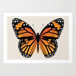 Monarch Butterfly | Vintage Butterfly | Art Print