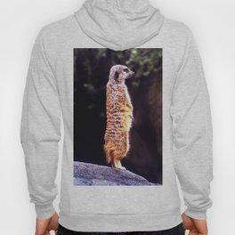 What's Up Meerkat? Hoody