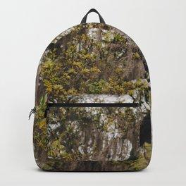 Spanish Moss Backpack