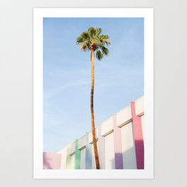 Palm at the Saguaro Art Print