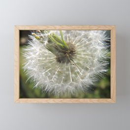 Close Your Eyes And Make A Wish Framed Mini Art Print