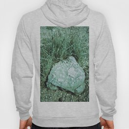 GREEN PICTURE OF A ROCK Hoody