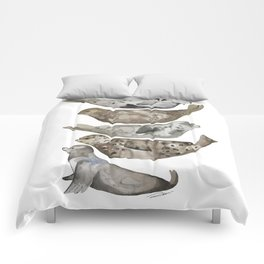 Seals of La Jolla Comforters
