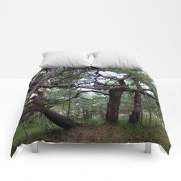 fairytale Comforters