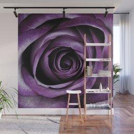Purple Rose Decorative Flower Wall Mural