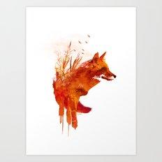 Plattensee Fox Art Print