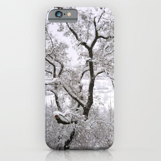 Winter Tree iPhone & iPod Case