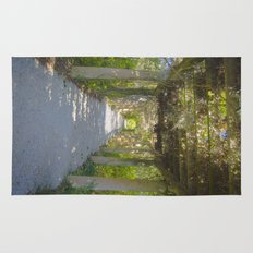 Perfect pathway Rug