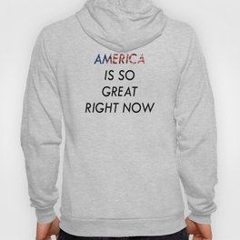 America Is So Great Right Now Hoody