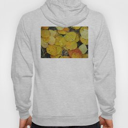 Water droplets on autumn aspen leaves Hoody