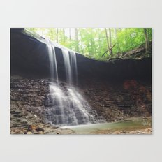 Blue Hen Falls Canvas Print