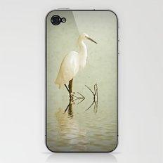 Little Egret iPhone & iPod Skin