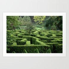 Garden Maze Art Print