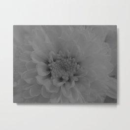 moonlit flower 2 Metal Print