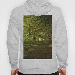 Fantasy Forest Painting Green Wood Hoody