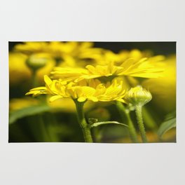 Flowers for Her! Yellow Daisies #decor#society6 Rug