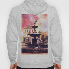 Fountain Square Park Hoody