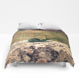 Slow Dream Comforters
