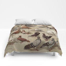 Vintage Pigeon Breeds Chart Comforters
