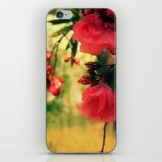 A promise of sweet softness iPhone & iPod Skin