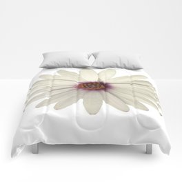 Symmetrical African Daisy with White Petals Comforters