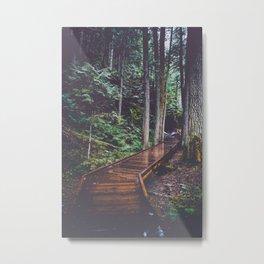 Woodland Wandering Metal Print