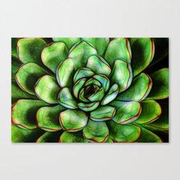 Graphic Succulent Canvas Print