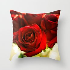 I Punched The Flowers You Gave Me, And Now I'm Sending Them Back Throw Pillow
