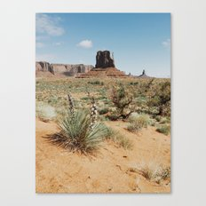 Blooming Southwest Desert Yucca Canvas Print