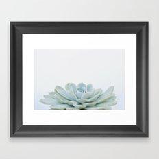 succulent 02 Framed Art Print