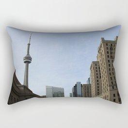 Views of the Six Rectangular Pillow