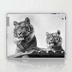 Tigers two Laptop & iPad Skin
