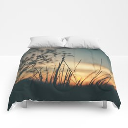 Vintage Wild Grass Sunset Comforters