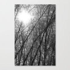 Michigan Winter - Whiteout 2 Canvas Print